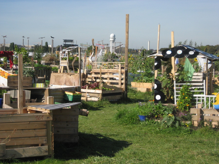 schockwellenreiter urban gardening auf dem tempelhofer feld. Black Bedroom Furniture Sets. Home Design Ideas